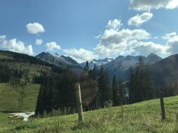 Tyrol (362)
